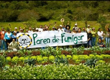 fumigar thumb 1 360x260 - El glifosato no es la solución para Colombia