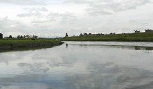 519919 1 300x176 - El futuro del río Bogotá, a la deriva