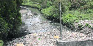 56b4fd679628b 300x150 - Prefiero 80 veces el rio Bogotá limpio que Transmilenio por la 7ª.