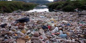 IMAGEN 13747280 2 300x150 - Prefiero 80 veces el rio Bogotá limpio que Transmilenio por la 7ª.