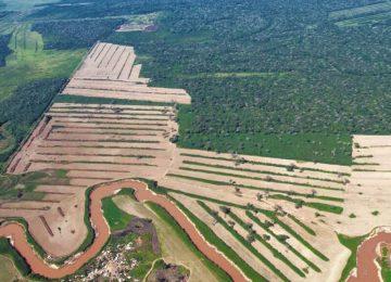 5junio temaph01 20190604045810 360x260 - El 68 % de la Amazonia protegida está amenazada