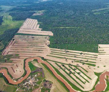 5junio temaph01 20190604045810 380x320 - El 68 % de la Amazonia protegida está amenazada