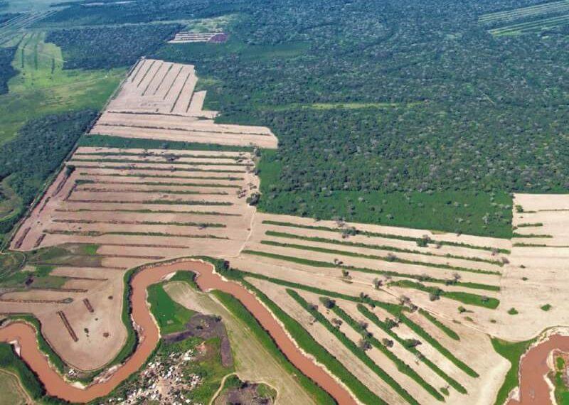 5junio temaph01 20190604045810 800x570 - El 68 % de la Amazonia protegida está amenazada
