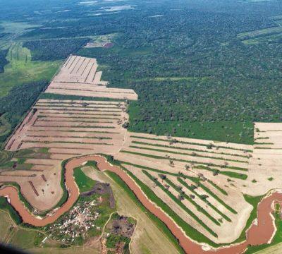 5junio temaph01 20190604045810 - El 68 % de la Amazonia protegida está amenazada