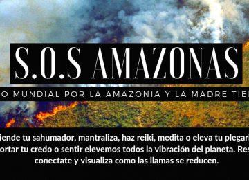 155fe970 f19c 44b6 a856 cbac3c2671e3 360x260 - Las llamas devoran el 20% del oxígeno que le entrega al mundo la selva amazónica, y aniquilan fauna y flora.