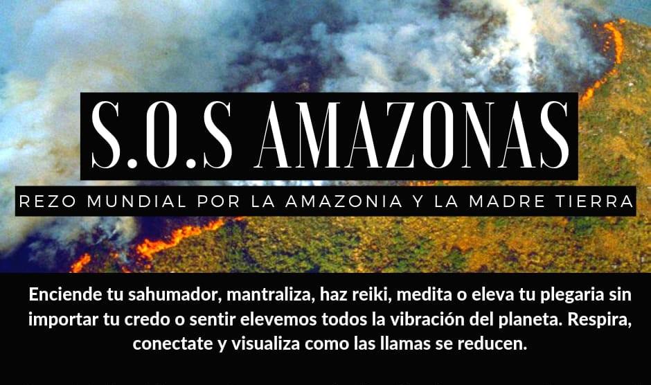 155fe970 f19c 44b6 a856 cbac3c2671e3 - Las llamas devoran el 20% del oxígeno que le entrega al mundo la selva amazónica, y aniquilan fauna y flora.