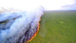 3aaf3027 2bc2 4243 bc3f 65bce55c2313 300x169 - Las llamas devoran el 20% del oxígeno que le entrega al mundo la selva amazónica, y aniquilan fauna y flora.