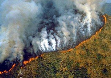 ECfUpb3XsAAbr3q - El Amazonas en llamas: aumentaron 83% los incendios forestales en un año