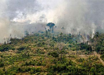 GEZE7YOPWBF3JMEQT4IHF4PYMY 1 360x260 - Brasil confirma extinción del fuego en un parque nacional de la Amazonía