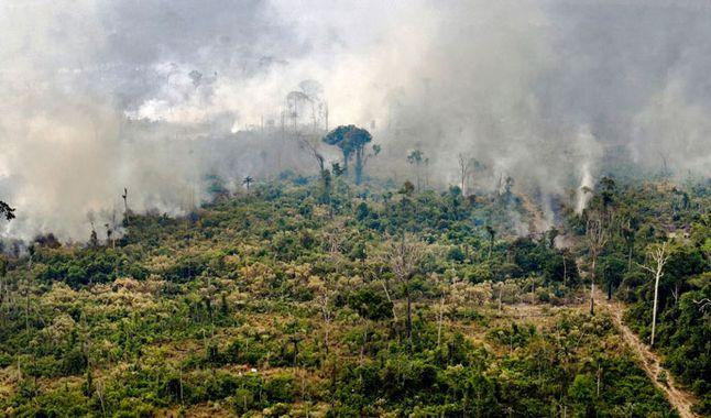 GEZE7YOPWBF3JMEQT4IHF4PYMY 1 - Brasil confirma extinción del fuego en un parque nacional de la Amazonía