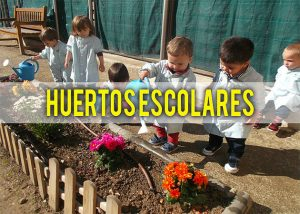 ab5345 3cb669b9cd8447aca7d1ed198b7dcb73 mv2 300x214 - Redescubriendo los jardines escolares