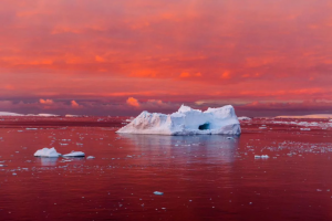 canal de lemaire c04ffd8c 300x200 - Los icebergs llegan a Canadá y atraen a turistas de todo el mundo