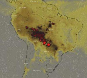 ee414d0f a558 4ddc 933f 3af07cdc8ab5 300x268 - Las llamas devoran el 20% del oxígeno que le entrega al mundo la selva amazónica, y aniquilan fauna y flora.