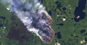 f8d94e4a 2828 4b3e 8110 ac87ccd342d2 300x154 - Las llamas devoran el 20% del oxígeno que le entrega al mundo la selva amazónica, y aniquilan fauna y flora.
