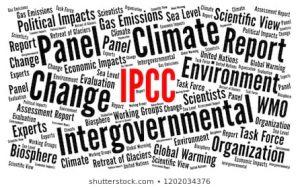 ipcc word cloud 260nw 1202034376 300x188 - Cambio climático: por qué el consumo de carne y lácteos tiene tanto impacto