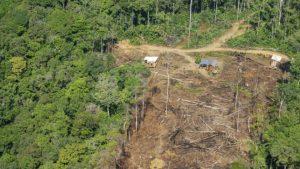 107745502 gettyimages 1055705586 300x169 - Noruega Y Alemania Retiran Apoyo Económico A Brasil Por Deforestación