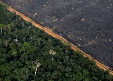 1568807308 649848 1568807871 noticia normal recorte1 360x260 - La ONU exige a los Gobiernos medidas urgentes y efectivas  para combatir la crisis climática