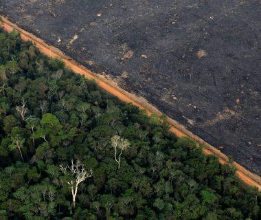 1568807308 649848 1568807871 noticia normal recorte1 380x320 - La ONU exige a los Gobiernos medidas urgentes y efectivas  para combatir la crisis climática