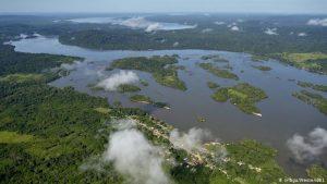 """45642078 303 300x169 - Los peces amazónicos enfrentan """"nuevas amenazas"""""""