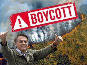 ECj2a2YW4AYkaAs 300x225 - ¿Por qué se quema la Amazonia?