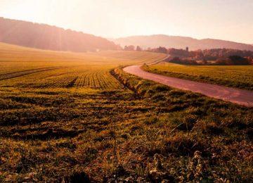agro pixabay pendiente1 360x260 - El cambio climático amenaza el futuro de la agricultura en Europa