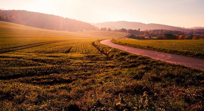 agro pixabay pendiente1 - El cambio climático amenaza el futuro de la agricultura en Europa
