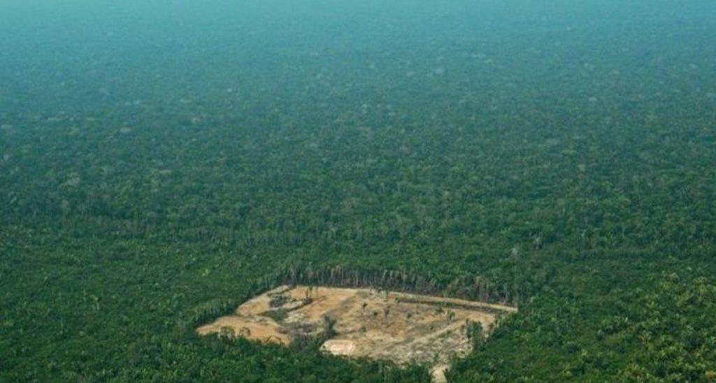 amazonas brasil deforestacion 1559786624599 1024x548 - Noruega Y Alemania Retiran Apoyo Económico A Brasil Por Deforestación