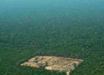 amazonas brasil deforestacion 1559786624599 360x260 - Noruega Y Alemania Retiran Apoyo Económico A Brasil Por Deforestación