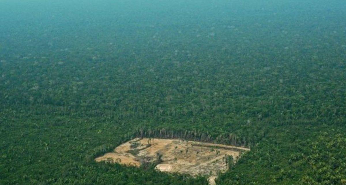 amazonas brasil deforestacion 1559786624599 - Noruega Y Alemania Retiran Apoyo Económico A Brasil Por Deforestación