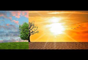 climate change 2063240 960 720 300x203 - La ONU exige a los Gobiernos medidas urgentes y efectivas  para combatir la crisis climática