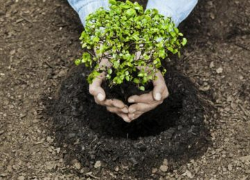 Noticias de Marzo 16 1080x675 360x260 - Expertos proponen conservar el 30% del planeta, para 2030, a fin  enfrentar la crisis climática.