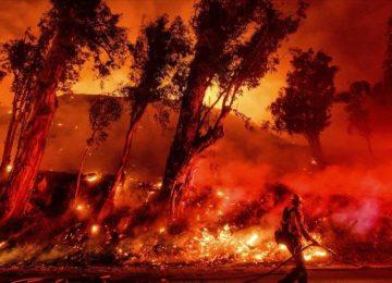 06500471 xl 360x260 - 11 000 científicos alertan de efectos 'graves' de cambio climático