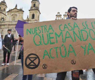 46818 1 380x320 - Movimientos ambientalistas se unirán al paro nacional del 21 de noviembre