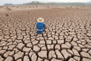 cambio climatico   onu 300x200 - El pecado del ecocidio
