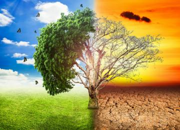 cambio climático enfermedades 360x260 - LAS ENFERMEDADES QUE PROVOCA EL CAMBIO CLIMÁTICO