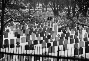 muertes 300x207 - LAS ENFERMEDADES QUE PROVOCA EL CAMBIO CLIMÁTICO