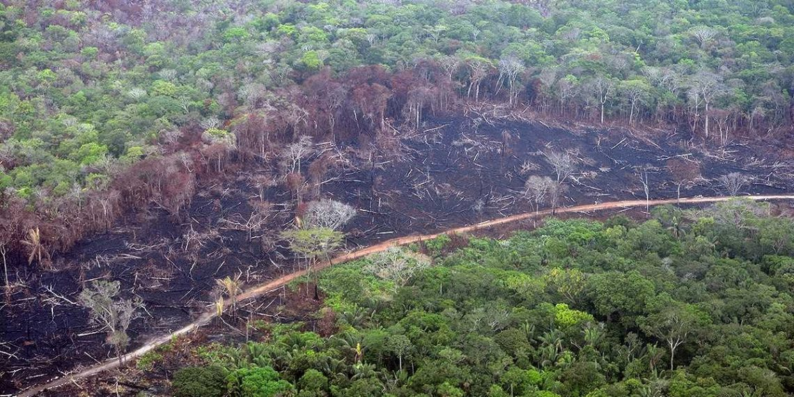 34955 1 1200x630 1140x570 - Los riesgos del cambio climático en Colombia.
