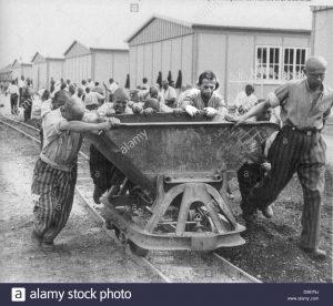 """campo de concentracion de presos politicos en alemania 1930 en el uniforme de presidiario comprometidos en el trabajo forzoso d987nj 300x276 - LOS VESTIGIOS DEL INFIERNO. O El trabajo los hará libres. """"ARBEIT MACHTFREI"""""""
