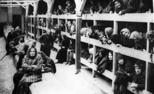 """campo concentracion auschwitz 300x184 - LOS VESTIGIOS DEL INFIERNO. O El trabajo los hará libres. """"ARBEIT MACHTFREI"""""""
