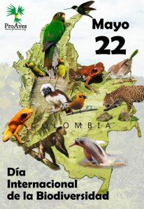 f83cef9980e215cf7767808ec43b6112 206x300 - Los riesgos del cambio climático en Colombia.