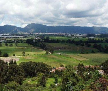 reserva thomas van der hammen semana 380x320 - Alcaldesa de Bogotá desistió de solicitud para intervenir Reserva Van Der Hammen