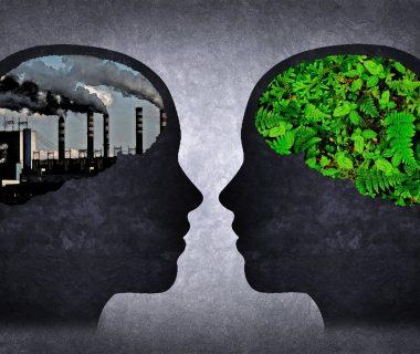 tras 11 anos de estudio descubrieron una estrecha correlacion entre las particulas contaminantes y las bajas puntuaciones en las pruebas cognitivas 22482e5e 1280x896 380x320 - El debate sobre el cambio climático y la desigualdad se abre paso en Davos