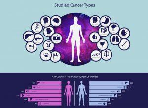 cancer types 300x219 - El mayor estudio genómico del cáncer abre la posibilidad de detectarlo antes de que aparezca