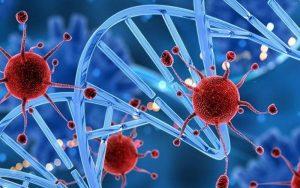 celulas 1 300x188 - El mayor estudio genómico del cáncer abre la posibilidad de detectarlo antes de que aparezca