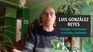 maxresdefault 1 1 300x169 - Las lecciones que puede dar el coronavirus a la especie humana