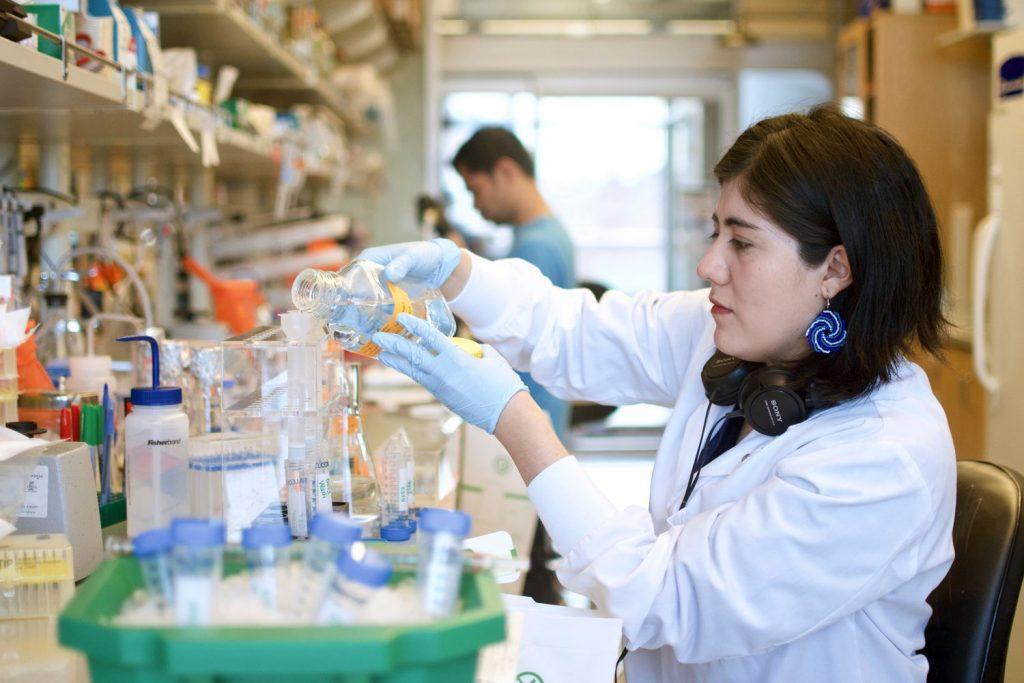 SLVXB2ZNTFA5PM7RU4LJB4A6YU 1024x683 - Coronavirus: cómo se está desarrollando la vacuna del covid-19//BBC News Mundo//YouTube