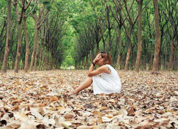 """Ecoansiedad psicólogos cambio climático niños 750x530 1 360x260 - La """"Última Esperanza"""" Global debe hacerse valer, porque la censura informativa deshonra la Verdad ambiental deVida..."""