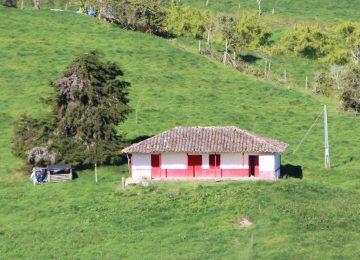 14469289500 3459b5350c b 360x260 - Los niños de Cundinamarca, invitados a dibujar la casa de sus sueños, como protagonistas de la Era Digital.