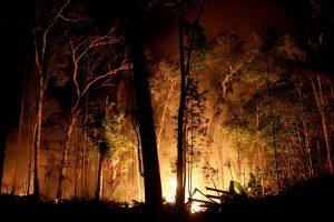 Amazonas Incendios galeria 6 300x200 - La temporada de incendios en la Amazonía de Brasil arrancó más fuerte que nunca