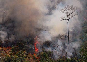 S6E6ONDCVRGNRDGRK4NRXONN2Q 360x260 - La temporada de incendios en la Amazonía de Brasil arrancó más fuerte que nunca